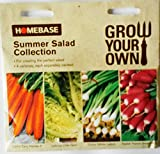 Homebase Summer Salad Collection Seeds 4 Varieties each separately packed Carrot Early Nantes 5 , Lettuce Little Gem , Onion White Lisbon , Radish French Breakfast 3