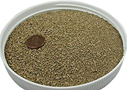 Colored Sand Safe for Play and Pets 20lbs (Tan) For Vase Filler, Decoration, Aquarium, Sandboxes, Substrate and Landscaping