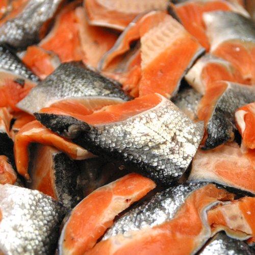 お弁当サイズの肉厚ふっくら銀鮭切り落し2kg [訳あり]