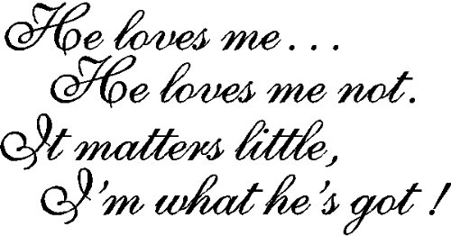 He loves me, He love me not.....Funny Love Wall Quotes Words Removable Wall Lettering, BLACK