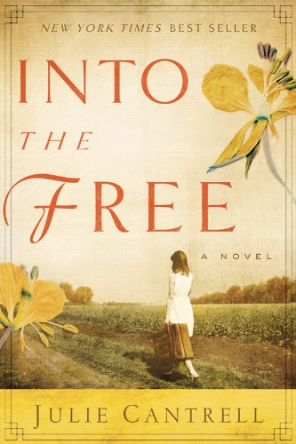 Into the Free by Julie Cantrell ebook deal
