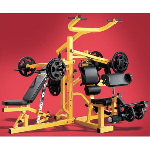 Powertec workbench vs normal bench bodybuilding forums