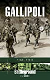 img - for Gallipoli (Battleground Europe) book / textbook / text book