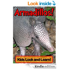 Armadillos! Learn About Armadillos and Enjoy Colorful Pictures - Look and Learn! (50+ Photos of Armadillos)