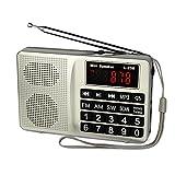 TIVDIO L-258 Portable Digital Shortwave Transistor Radio with AM FM Micro-SD Card AUX Input MP3 Player Speaker(Silver)