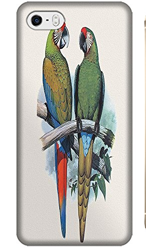 Fantastic Fay Apple Accessories Happy Colorful Mother Childern Parrot Fly The Tree Special Design Cell Phone Cases Covers For Iphone 5C No.10