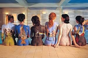 NMR 9098 Pink Floyd Back Art Decorative Poster