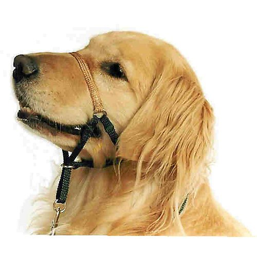 Comfort Trainer Dog Head Halter Size 3 Red