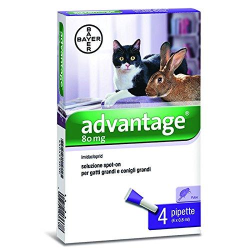 bayer-advantage-spot-on-80-gatto-coniglio-4-pipette-per-pulci-4-x-08-ml
