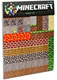 2 X Minecraft Sheet Magnets