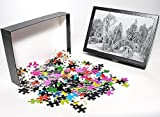 Photo Jigsaw Puzzle of White Frost and S...