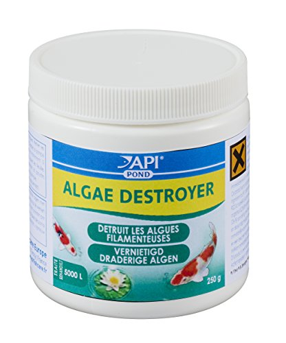 API-Traitement-de-lEau-pour-Bassin-dAgrment-Algae-Destroyer-250-g