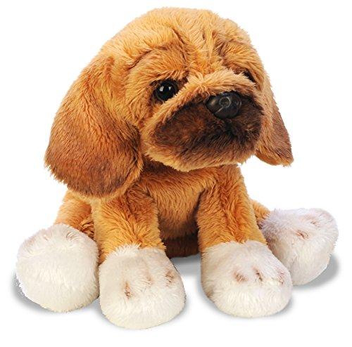 yomiko-puggle-small