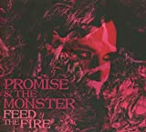 vignette de 'Feed the fire (Promise and the Monster)'