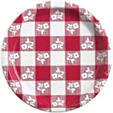 Creative Converting Plastic Coated Red Gingham Paper Plates, 8.75 Inch, 25 Count