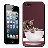 Kitten Sat in China Cup & Saucer Tea Set Hard Case Clip On Back Cover For Apple iPhone 5s