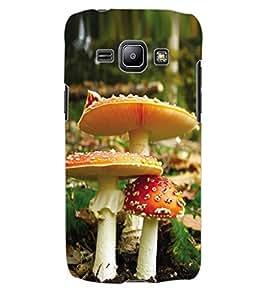 ColourCraft Beautiful Mushrooms Design Back Case Cover for SAMSUNG GALAXY J1