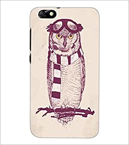 PrintDhaba Owl D-1246 Back Case Cover for HUAWEI HONOR 4X (Multi-Coloured)