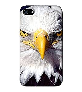 Go Yankee Back Case Cover For Iphone 5/5s