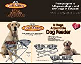 3-step Adjustable Pet Feeder