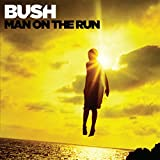 Man on the Run (Deluxe)