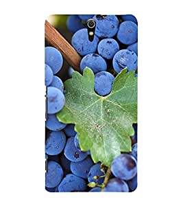 Fuson Premium Back Case Cover Grapes With Black Background Degined For Sony Xperia C5 Ultra Dual::Sony Xperia C5 E5553 E5506::Sony Xperia C5 Ultra