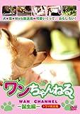 ワンちゃんねる-誕生編-ドラマ完全版[DVD]