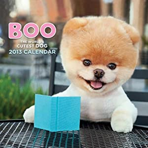 2013 Wall Calendar: Boo [Calendar]