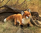 Folkmanis Standing Red Fox Puppet