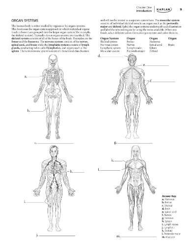 Anatomy Coloring Book Kaplan Anatomy Coloring Book Media