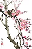 Love Birds on the Cherry Blossom Tree -- White Background, Giclee Print, Flower Picture of Two Birds Perching on a Branch, 13 X 20 Inches