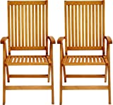 LuuNguyen - Tullamore 5 Positions Reclining Folding Arm Chair Hardwood Outdoor Furniture (Natural Wood Finish), Set of 2