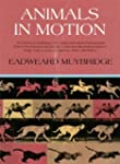 Animals in Motion (Dover Anatomy for...