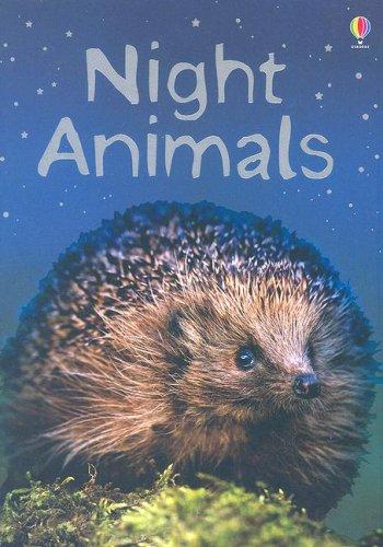 Night Animals (Beginners Nature)