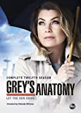 Greys Anatomy: Season 12