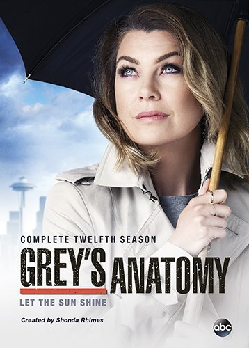 Grey's Anatomy: The Complete Twelfth Season [DVD] [Import]