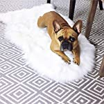 LuxeLife Premium Faux Australian Sheepskin Rug Cruelty-Free Eco Friendly or Decorative Fur Throw Cover - Non-Toxic & Hypoallergenic - 2ft x 3.2ft Longer Size - Ivory White