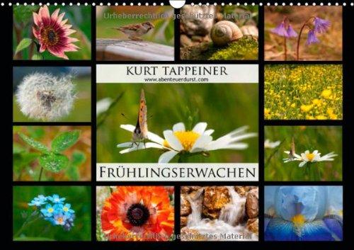fruhlingserwachen-wandkalender-2014-din-a3-quer-fruhling-in-sudtirol-monatskalender-14-seiten