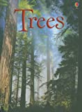 img - for Trees (Usborne Beginners) book / textbook / text book