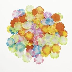 Assorted Bright Flower Petals (1,000 pcs)
