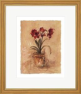 Amazon Com Secret Amaryllis Ii By Cheri Blum Framed Art