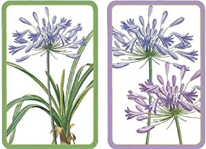 Entertaining with Caspari Double Deck of Bridge Playing Cards with Jumbo Typeface, Agapanthus, Set of 2
