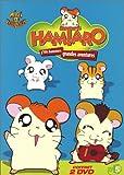 echange, troc Coffret Hamtaro 2 DVD