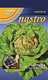 Taped Franchi Lettuce Regina di Maggio