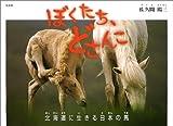 ぼくたち、どさんこ—北海道に生きる日本の馬