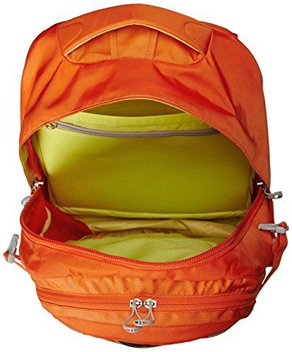 小鹰 Osprey Packs Flare Daypack 15寸城市日用双肩包图片