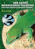 Der Große Madagaskar Taggecko. Phelsuma madagascariensis grandis title=