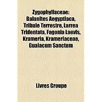 Zygophyllaceae: Balanites Aegyptiaca, Tribule Terrestre, Larrea Tridentata, Fagonia Laevis, Krameria, Krameriaceae...