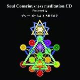 ソウル コンシャスネス瞑想