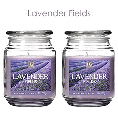 Hosley Set of 2 Lavender Fields, Highly Scented, 18 Oz EACH, Highly Scented, 18 Oz EACH, Jar Candle. Hand Poured Using a High Quality Wax Blend with Essential Oil Infused Fragrance Ingredients to Create a Highly Scented Aroma. Ideal Gift for wedding, Spa,